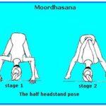 Moordhasana