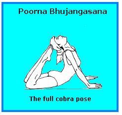 healthier you  poorna bhujangasana