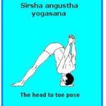 Sirsha angustha yogasana