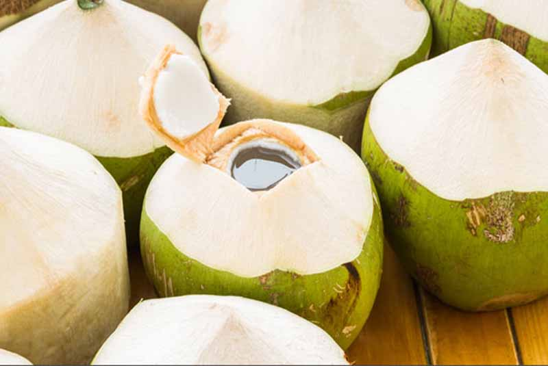 Coconut Water a Natural Immunity Booster